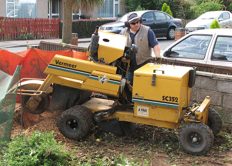 tree stump grinding chandler az